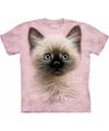 Kinder T-shirt kat/poes/kitten met blauwe  ogen