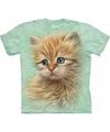 Kinder T-shirt rode kat/poes/kitten met blauwe  ogen